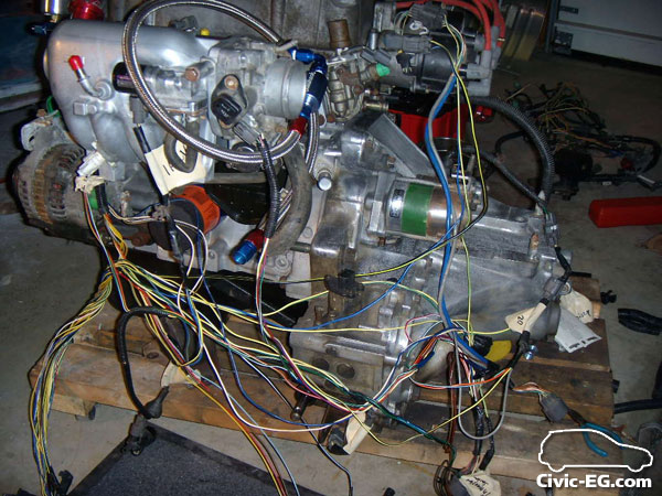 Civic EG View topic - Engine Bay Wire Tuck on mustang fuse box, ford fuse box, 1993 honda accord fuse box, 2005 odyssey passenger fuse box,
